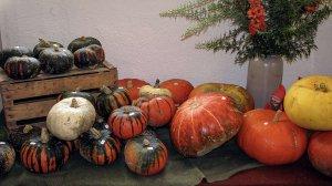 Herbstmarkt im Kloster